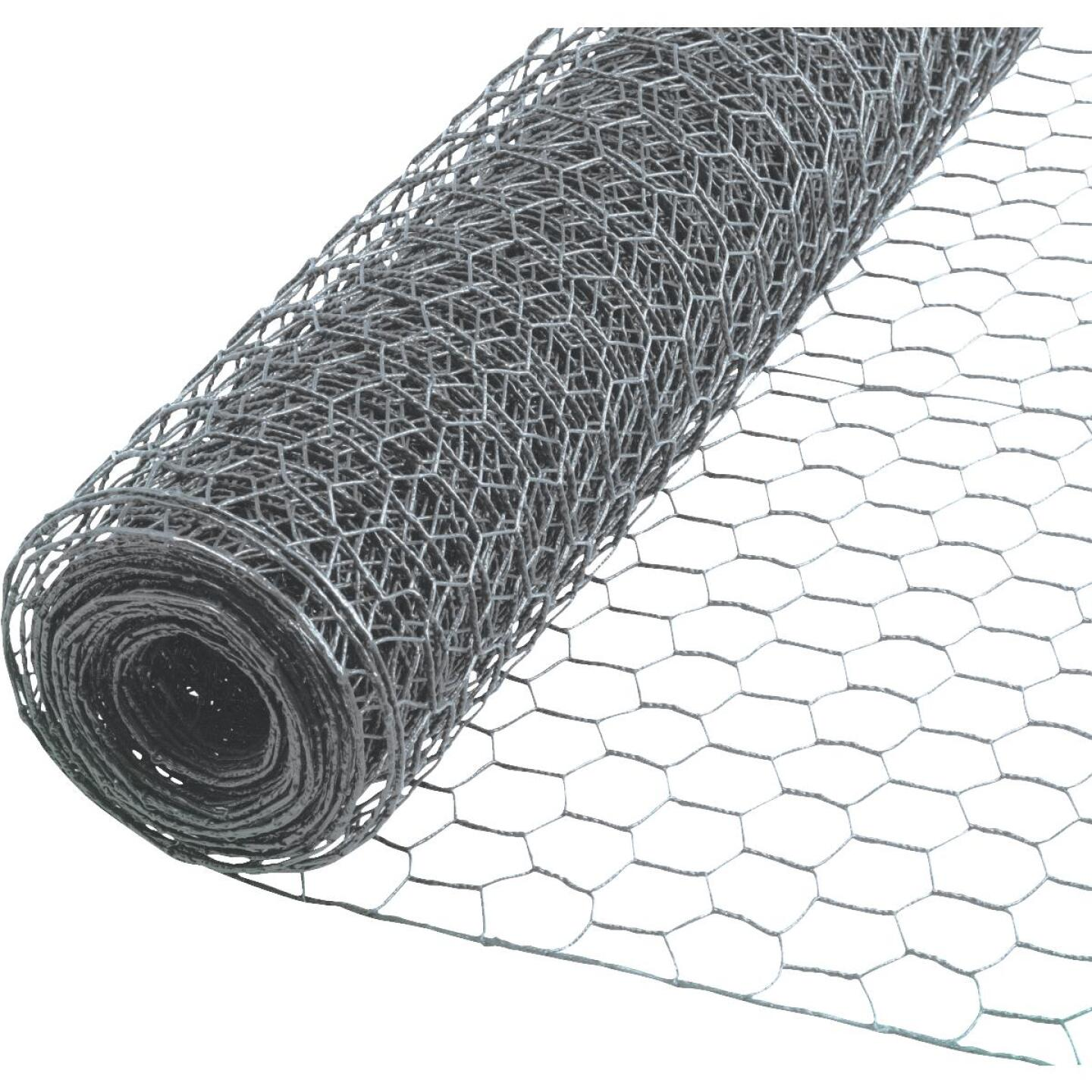 Do it 1 In. x 60 In. H. x 150 Ft. L. Hexagonal Wire Poultry Netting Image 1